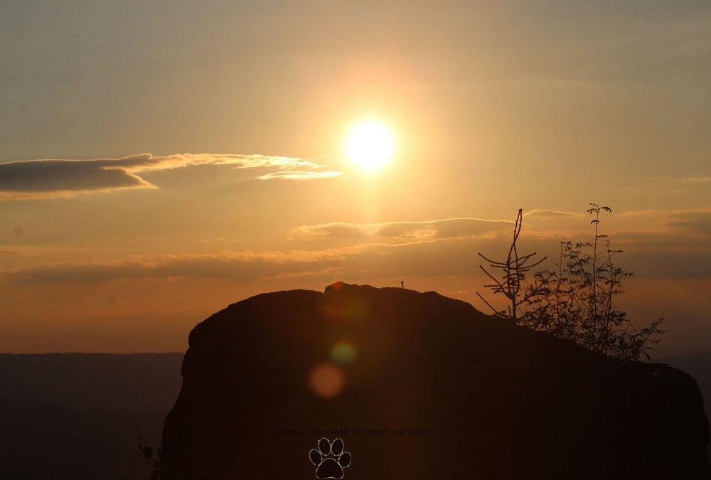 Pfotentour zum Silberberg bei Bodenmais