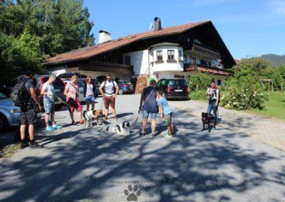 Ihre Pension am Nationalpark Bayrischer Wald  Urlaub mit Hund