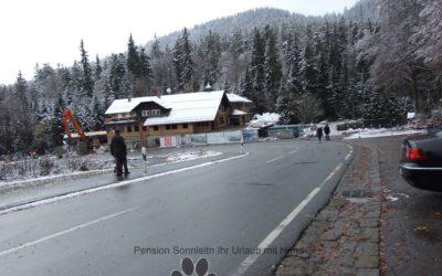 Pfotentour zum Großer Arbersee beim 1. Schnee
