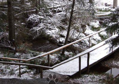 Arbersee beim 1 Schnee am 7.11.2016 021