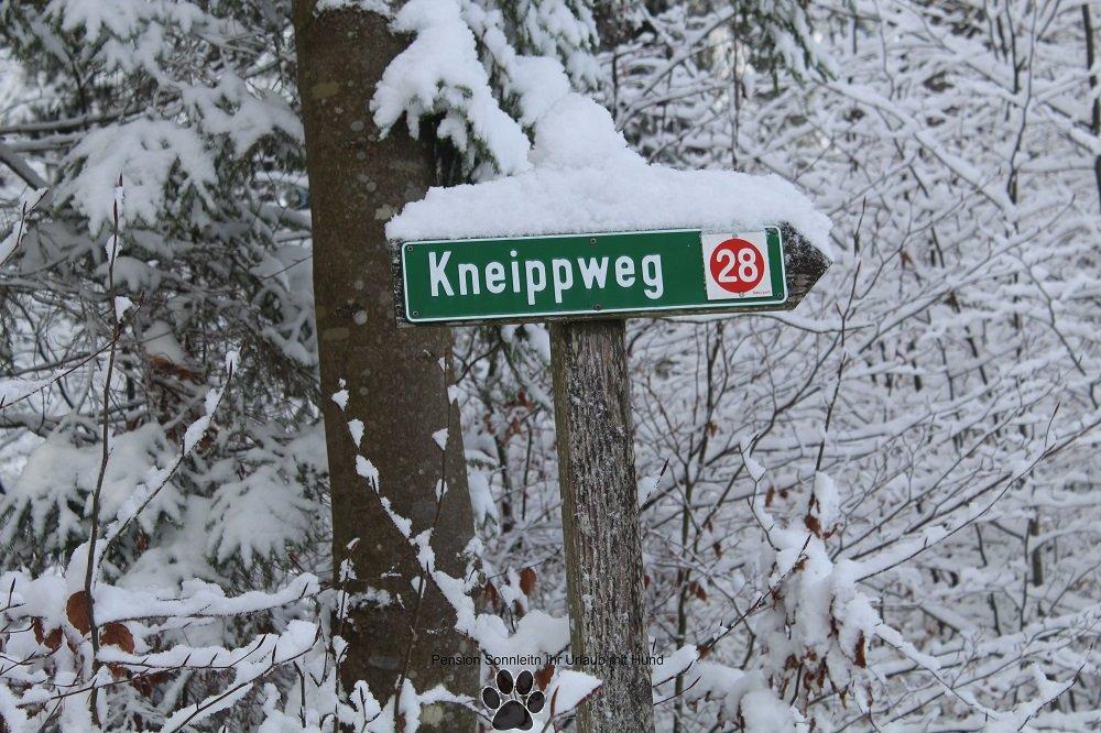 Pfotenschneetour Kneippweg Rabenstein